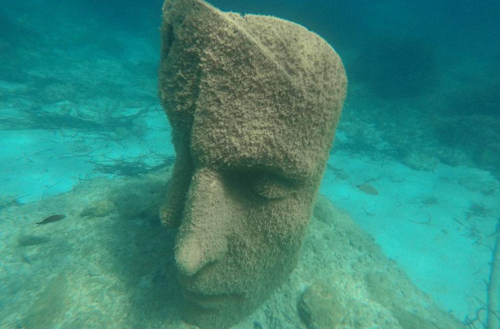 Randonnée palmée autour des sculptures